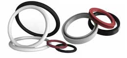 What Are Spring-Energized Seals?